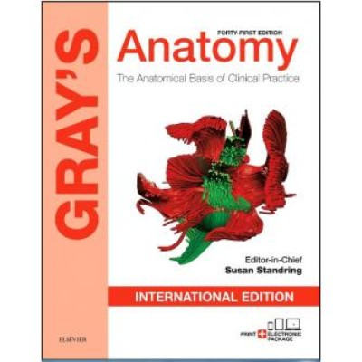 Gray's Anatomy: The Anatomical Basis of Clinical Practice 41st International edition Edition