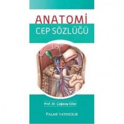 Anatomi Cep Sözlüğü