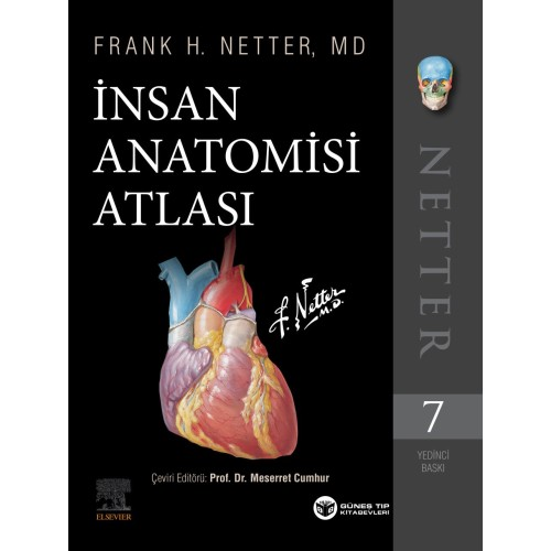 Netter İnsan Anatomisi Atlası 7. Baskı